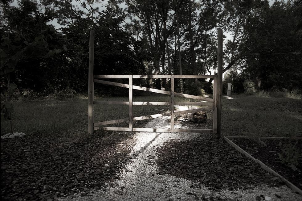 Eventi Arte Venezia, Il giardino Promesso, Claudio Rocchetti 6